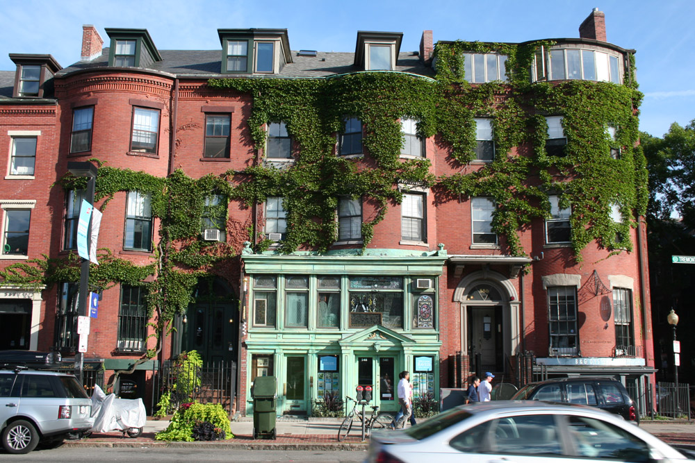 Boston Ivy on the walls, William Raveis real estate store front