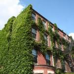 Boston Ivi, Granby street, Corner bulding house
