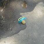 Sad things on the Streets of Paris, Tétine tototte enfant perdue