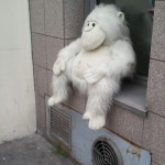 Sad things on the Streets of Paris, Gros singe en peluche blanche perdu abandonné - Photo : Xavier H.