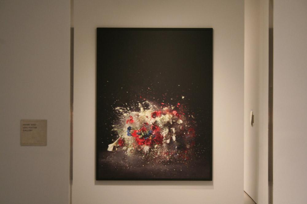 Museum of Fine Arts, MFA Boston - Ori Gersht, History Repeating