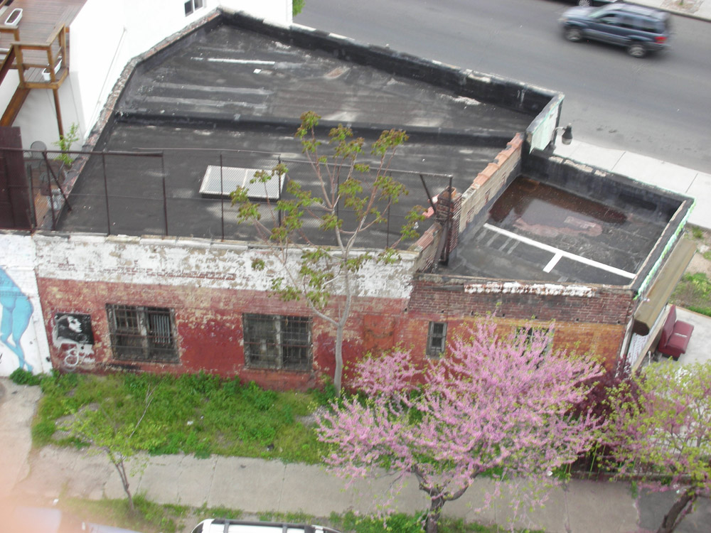 New-York Architecture, Brooklyn, Old vintage building from roof
