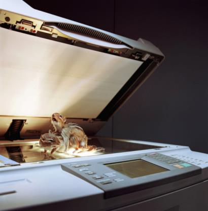 IMAGE BANK FAIL Two stuffed chipmunks in mating position on top of photocopier (c) MA Reynolds