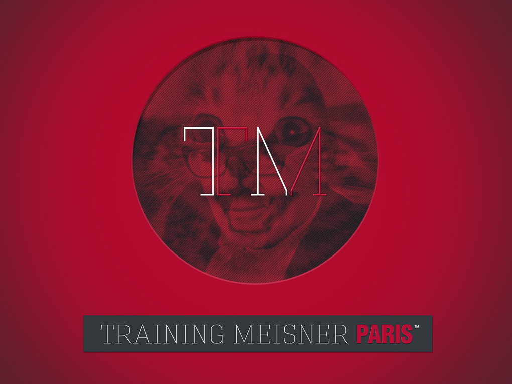 Website for acting workshops : Training Meisner Paris