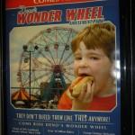 Cover Deno's wonder Wheel amusement park (Coney Island)