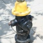 Boston Street - Fire hydrant