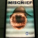 Boston Graphic Design, New England Aquarium adversiting campain cover subway, Mischief Loves Company