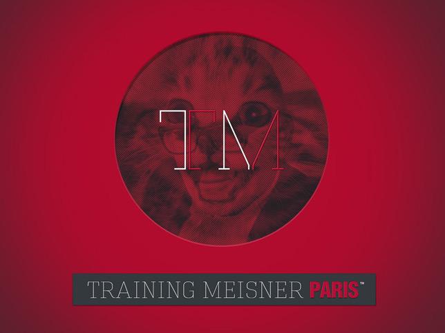 Website for acting workshops : Training Meisner Paris